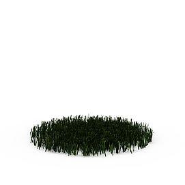 3d<font class='myIsRed'>植物</font>模型
