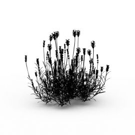3d花草<font class='myIsRed'>植物</font>模型