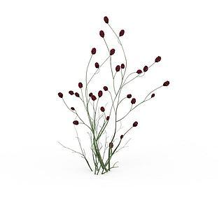 野生<font class='myIsRed'>植物</font>3d模型