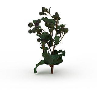 绿色<font class='myIsRed'>植物</font>3d模型