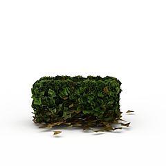 植物灌木丛模型3d模型