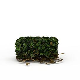植物<font class='myIsRed'>灌木丛</font>3d模型