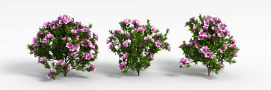 3d园林<font class='myIsRed'>花</font>模型