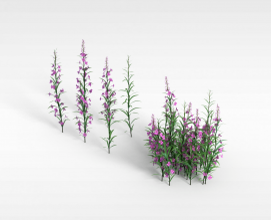 3d紫色<font class='myIsRed'>花</font>模型