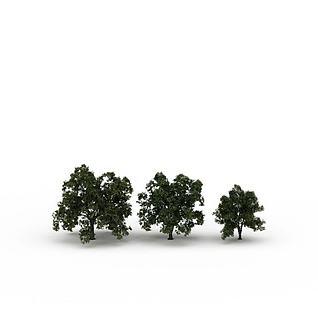 路边树3d模型