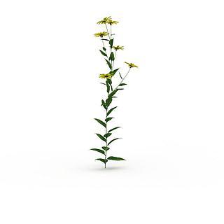 黄色花3d模型