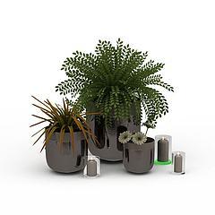 绿色盆景模型3d模型