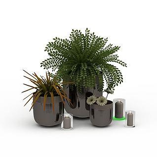 绿色盆景3d模型