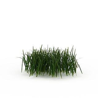 绿色草丛3d模型