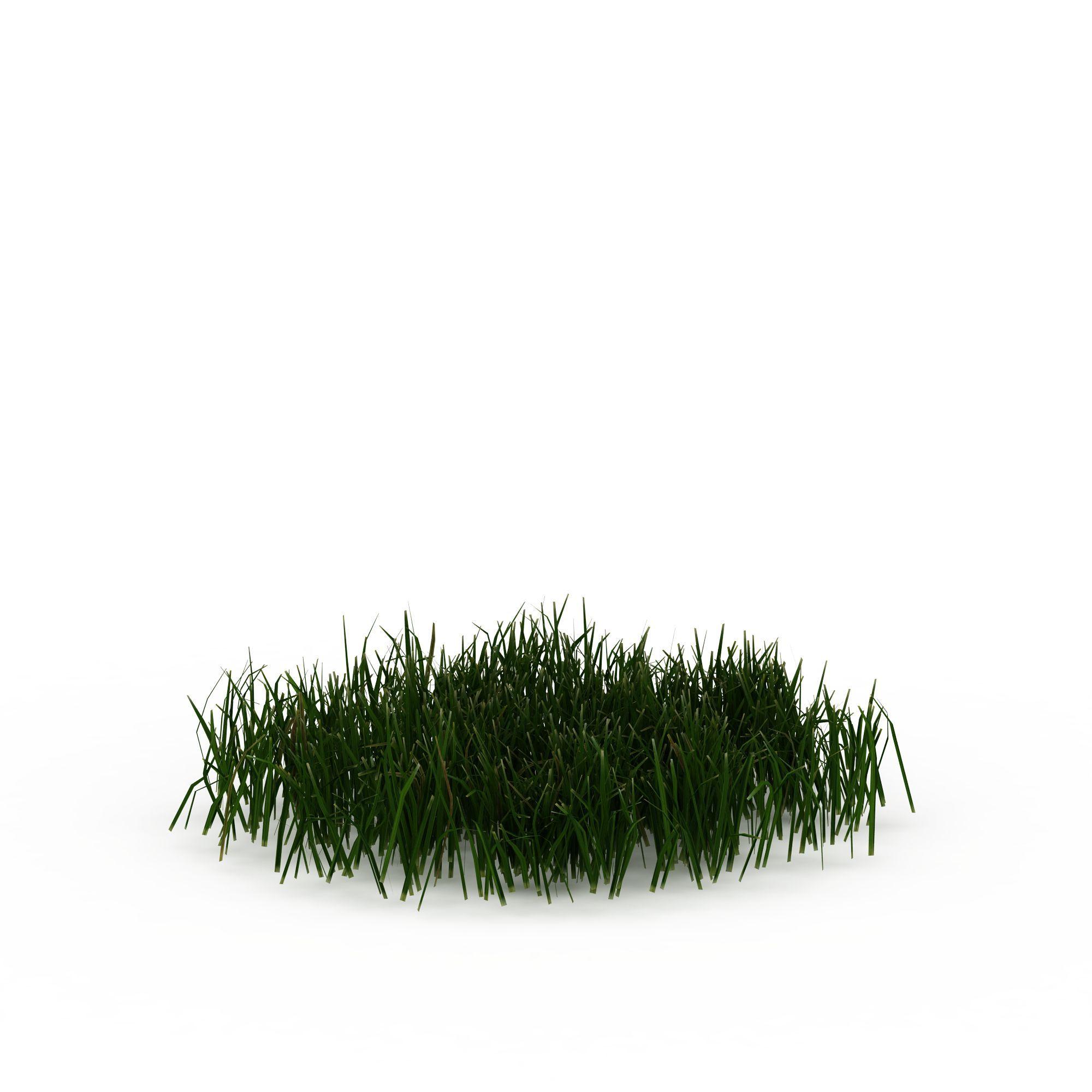 绿色草丛图片_绿色草丛png图片素材_绿色草丛png高清