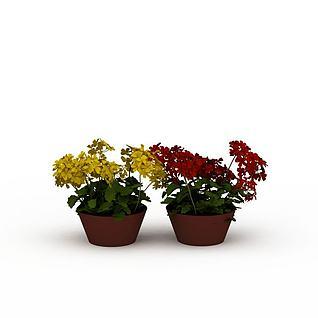 开花盆景3d模型