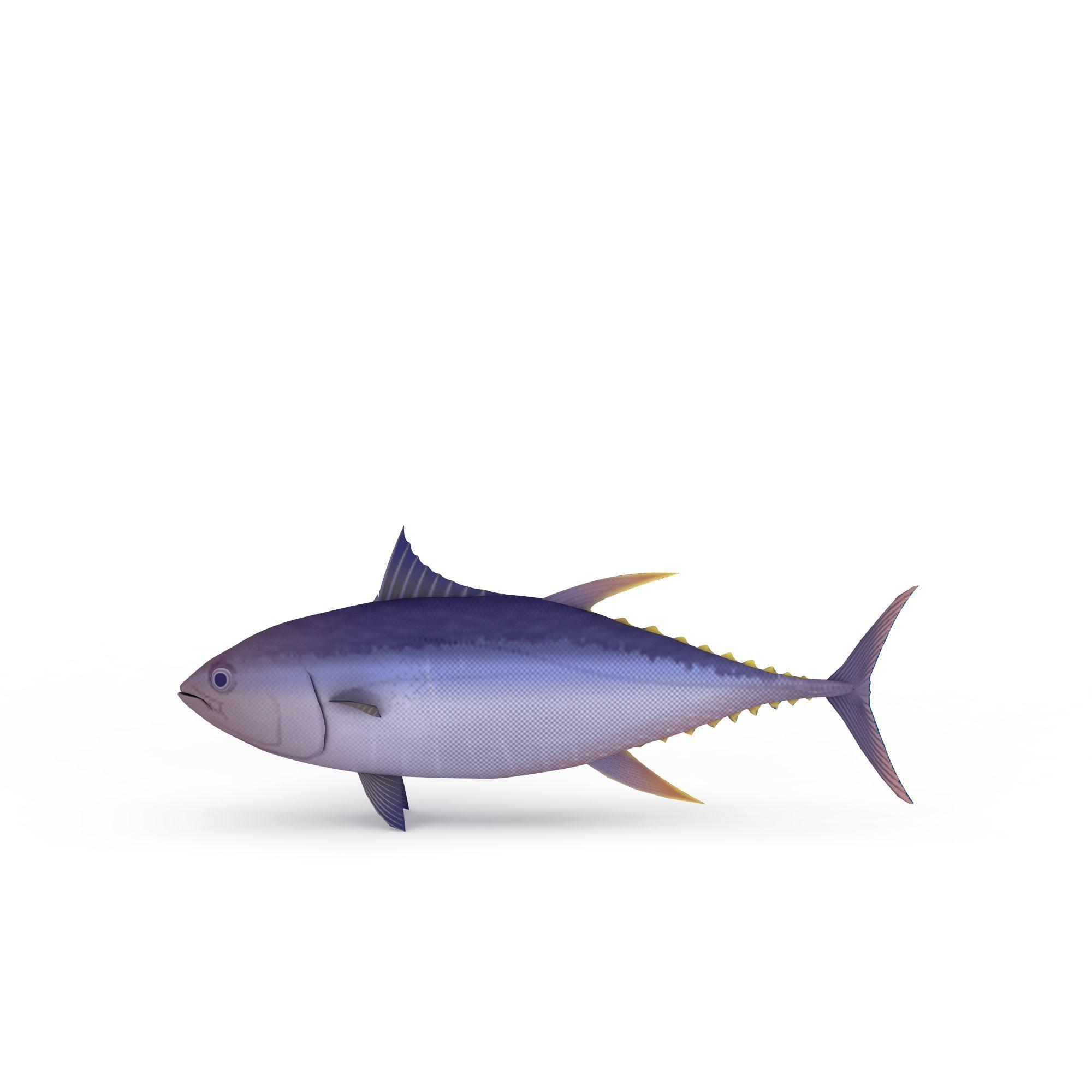 深水鱼图片_深水鱼png图片素材_深水鱼png高清图下载