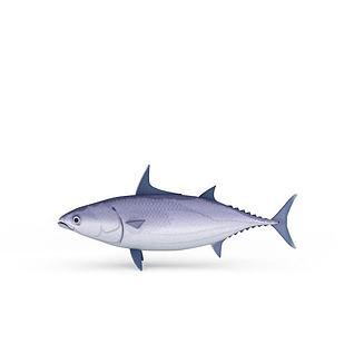 深水鱼3d模型3d模型