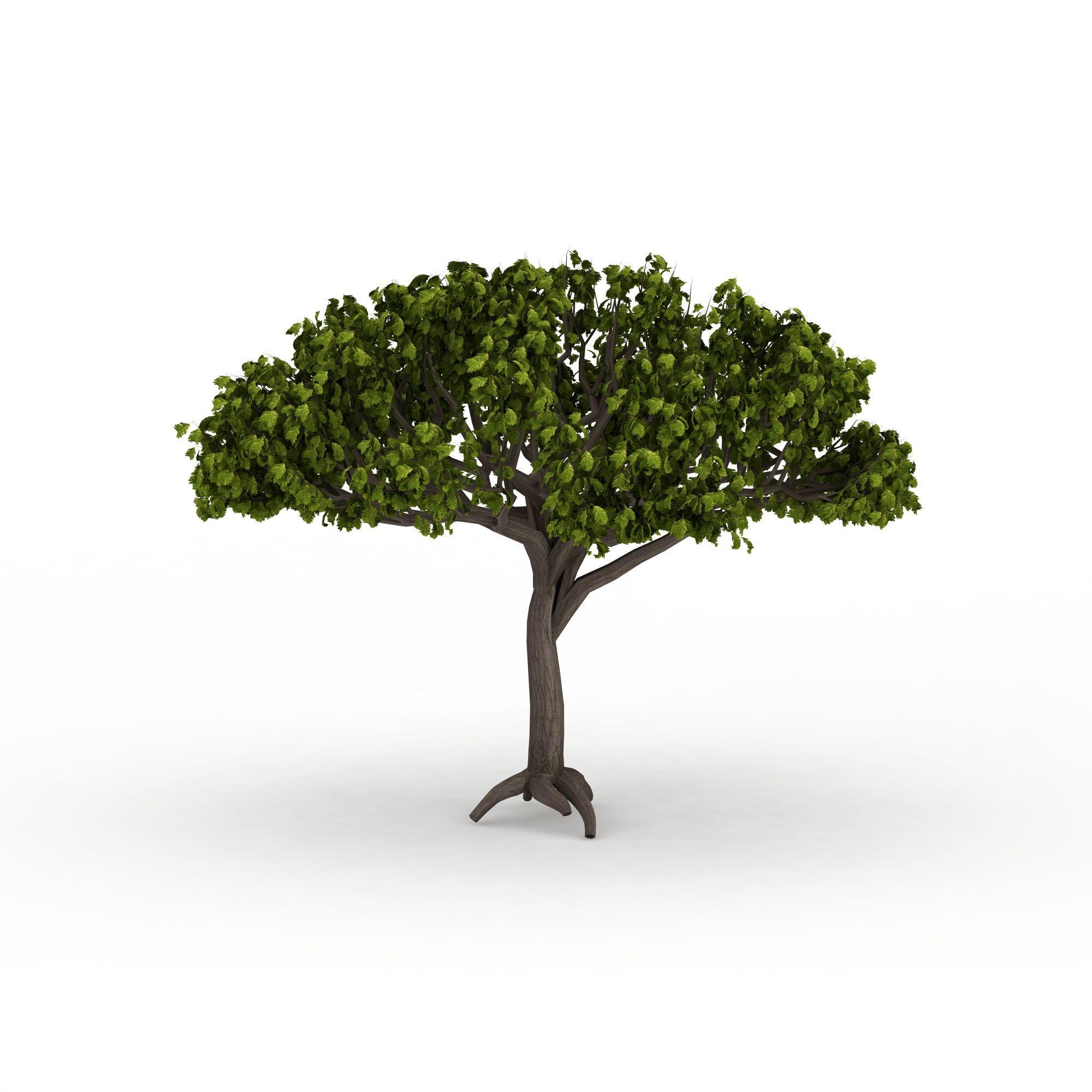 植物 树 绿色树木3d模型 绿色树木png高清图  绿色树木高清图详情