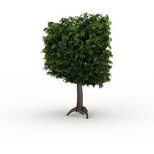 方形景观绿树3d模型