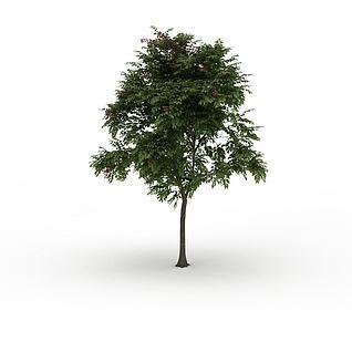 落叶景观树3d模型