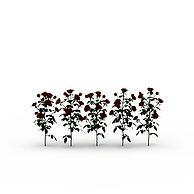玫瑰花3D模型3d模型