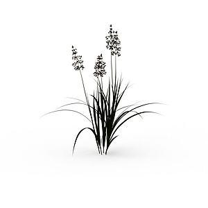 田间野草模型