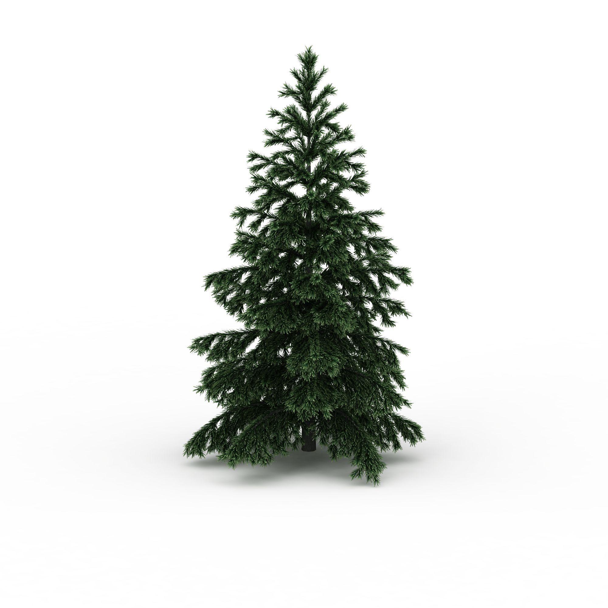 室外松树图片_室外松树png图片素材_室外松树png高清