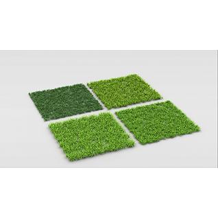 绿化草坪3d模型