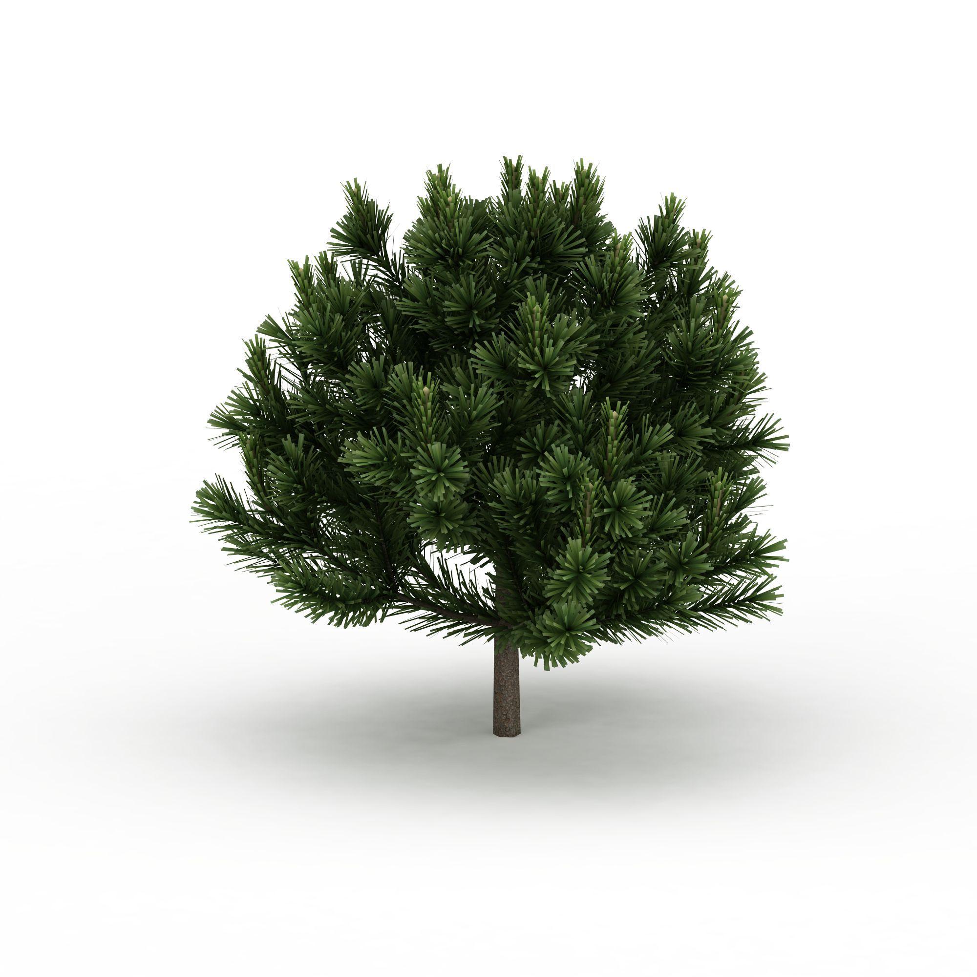 格式 png 风格 现代 上传时间 2016/03/25  关键词:松树3d模型景观树3