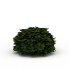道路绿色植被模型