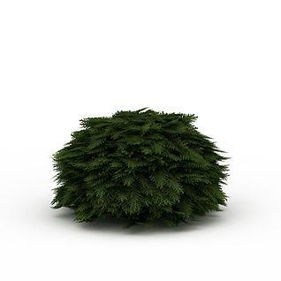 道路绿色植被3d模型