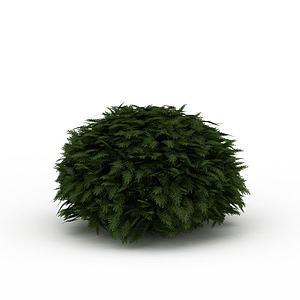 3d球形灌木景观模型