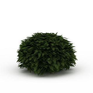 球形灌木景观3d模型