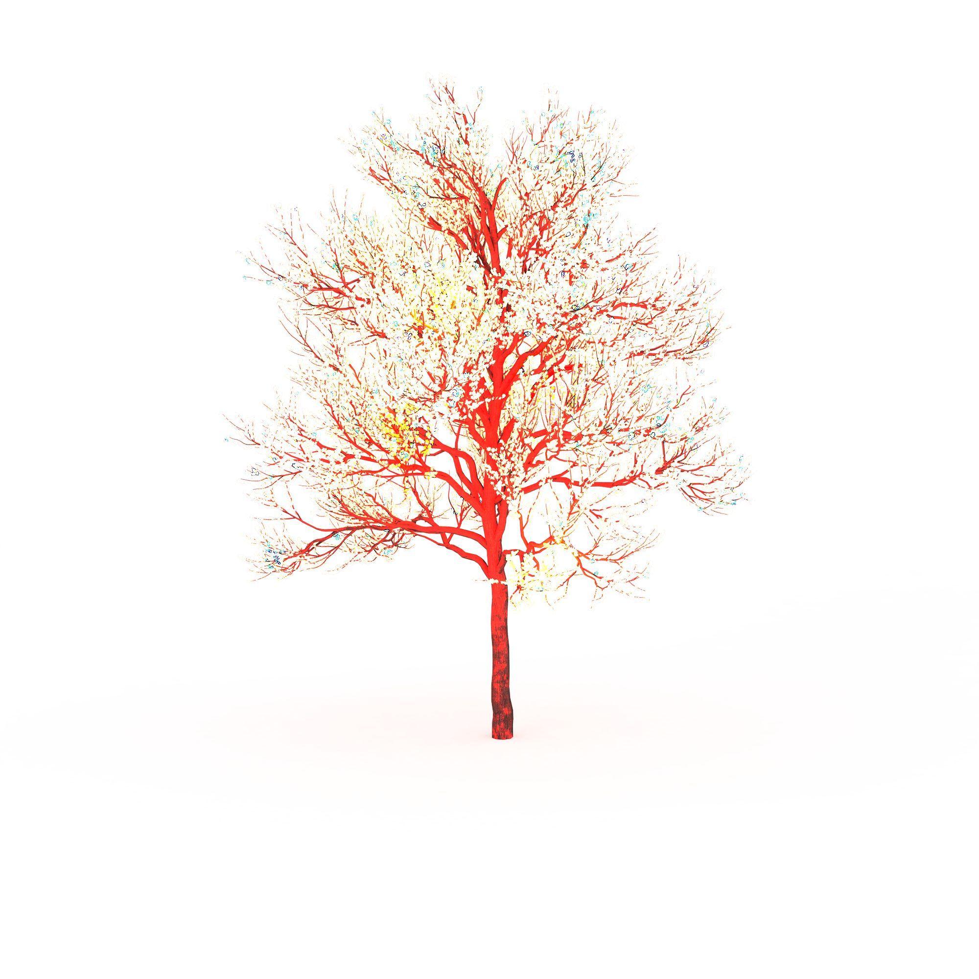 红色景观树图片_红色景观树png图片素材_红色景观树图