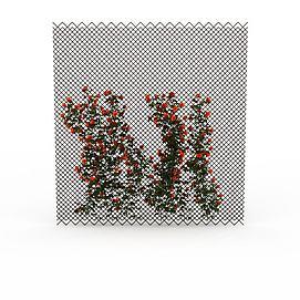 开花藤蔓模型