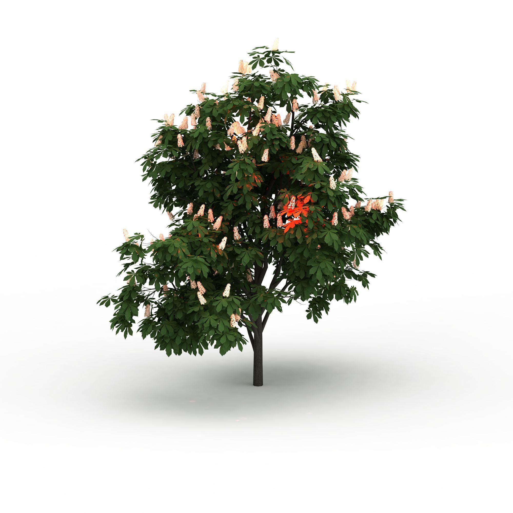 户外建筑 园林景观小品 室外装饰树3d模型 室外装饰树png高清图  室外