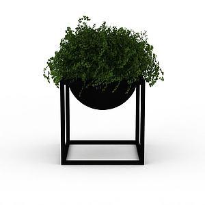 装饰绿植模型