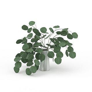 办公室绿植3d模型