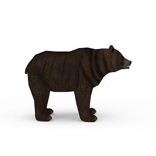棕熊3d模型