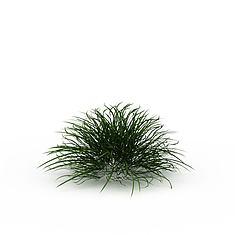 园林绿草3D模型3d模型