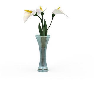 白色马蹄莲3d模型