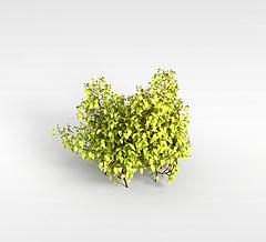 小树林模型3d模型