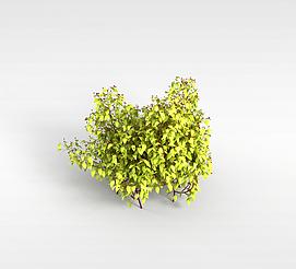 3d小<font class='myIsRed'>树</font>林模型