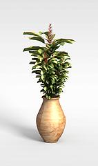 盆栽装饰模型3d模型