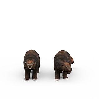 野熊3d模型