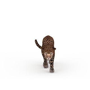 花豹3d模型