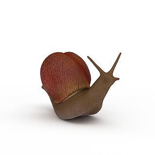 蜗牛3d模型