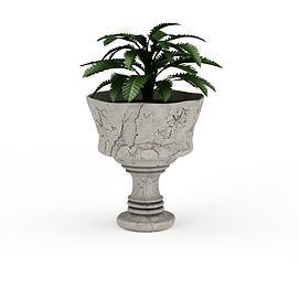 观赏性盆栽模型