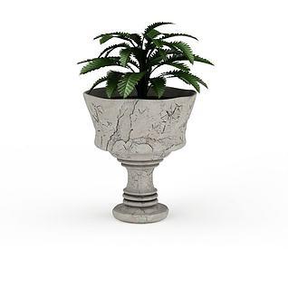 观赏性盆栽3d模型