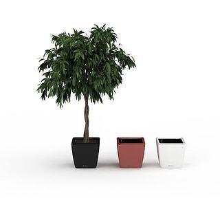 绿植花盆组合3d模型