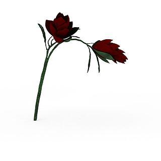 红玫瑰3d模型
