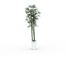 竹子盆栽模型