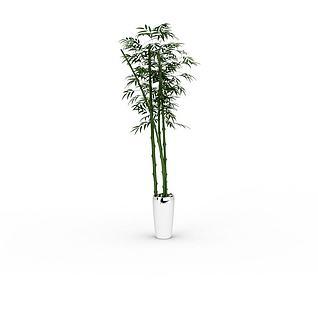 竹子盆栽3d模型