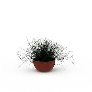 藤蔓绿植盆栽3d模型